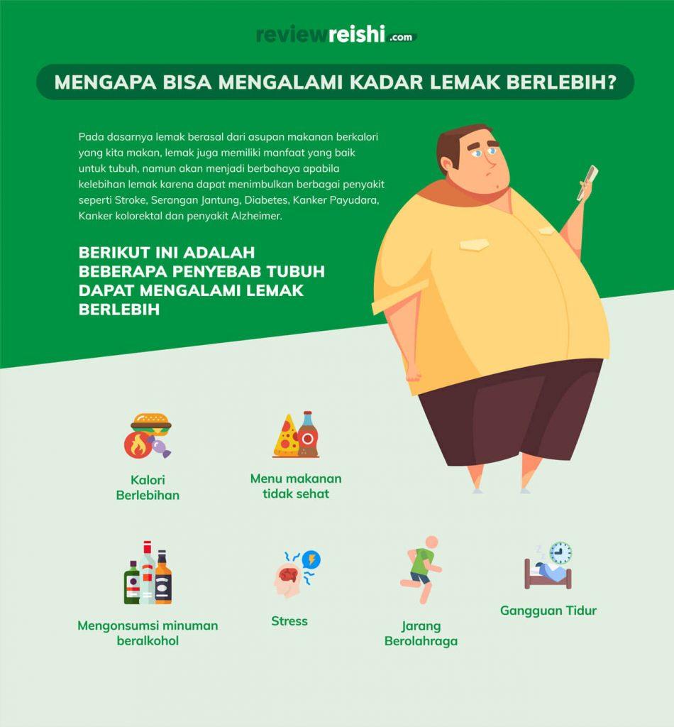 penyebab-kelebihan-lemak-di-dalam-tubuh