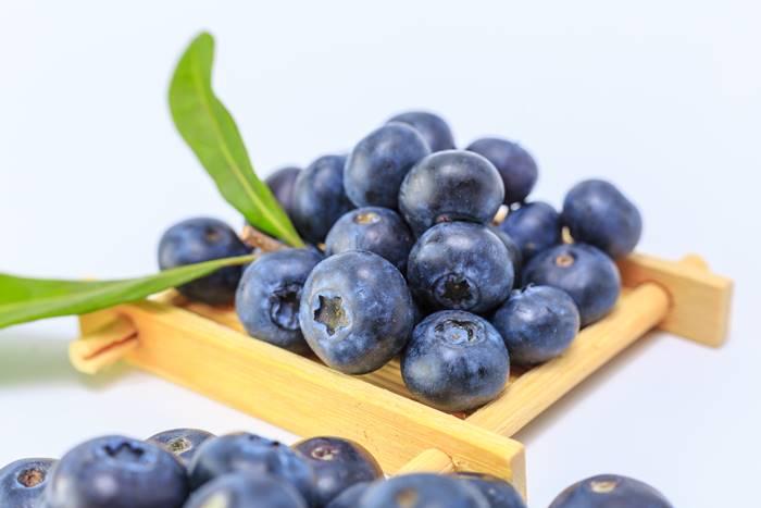 15-makanan-untuk-meningkatkan-sistem-kekebalan-tubuh-review-reishi-blueberry
